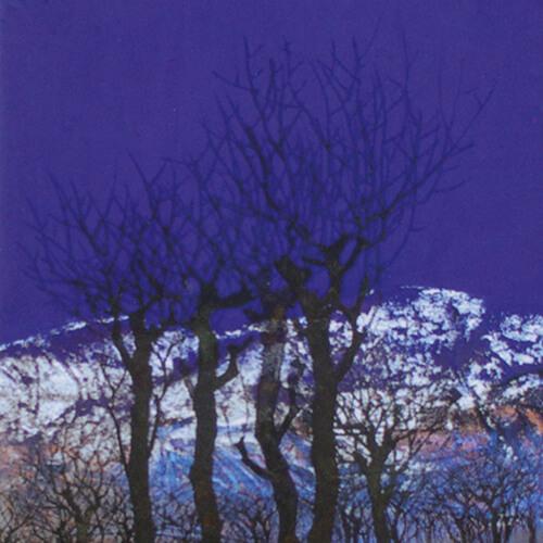 2009年6月12日から開催の「蒼雪の叙事詩 柴田 長俊 展」のサムネイル画像
